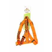 Friendly Pet Collars - Adjustable Orange No Dogs Dog Harness