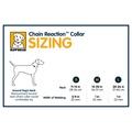 Chain Reaction Dog Collar - Meadow Green 4