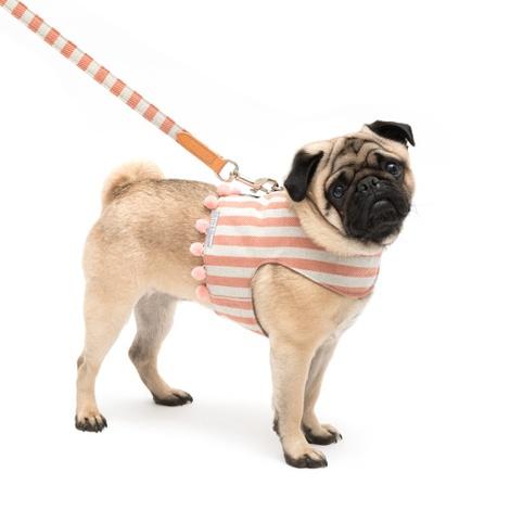 Stripe Pom Pom Dog Harness