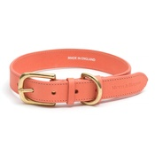 Mutts & Hounds - Coral Leather Dog Collar
