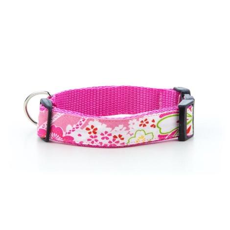 "Lily Dog Collar 1"" Width 2"