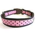 Classic Brown on Pink Polka Dot Dog Collar 2