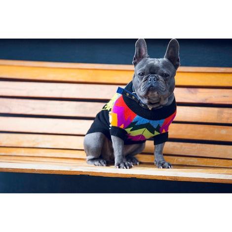 Autumn Leaf Cashmere Dog Sweater 2