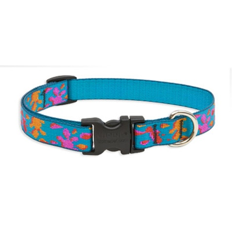 Wet Paint Lupine Dog Collar