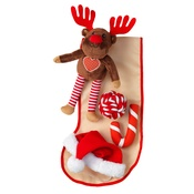 House of Paws - Party Animals Dog Stocking