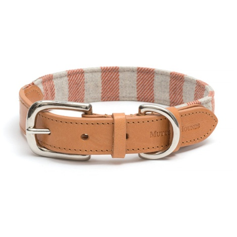 Camello Striped Dog Collar