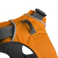 Front Range™ Dog Harness Campfire Orange 2