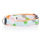 Pet Pooch Boutique - Pineapple Collar