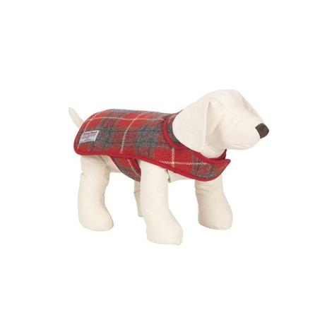 Hoxton Tartan Harris Tweed Dog Coat 2