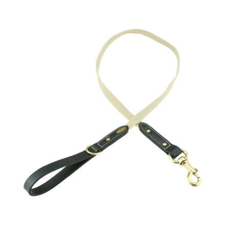 Astor Webbing Dog Lead – Black