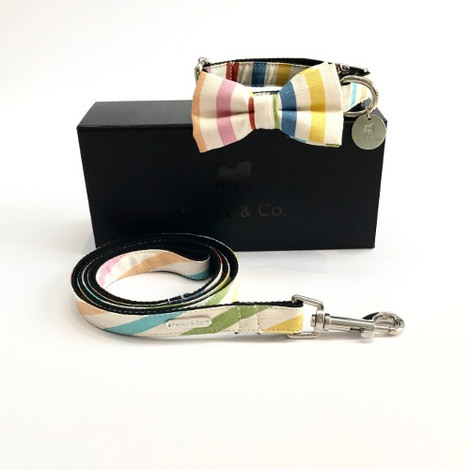 Collar, Bow Tie and Lead Set - Thurlestone