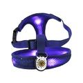 LED Dog Harness - Blue
