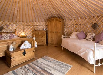 Primrose Yurt, Cornwall