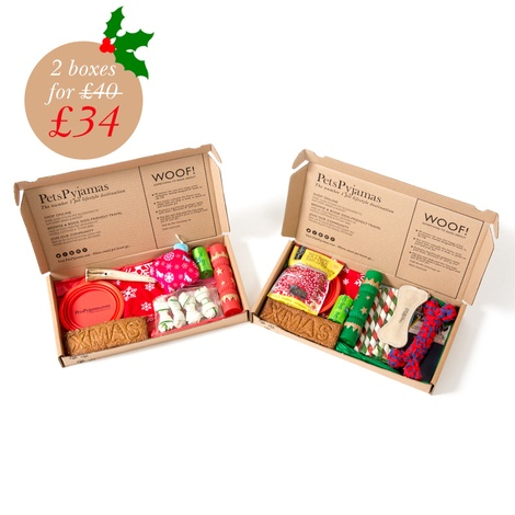 Personalised Christmas Cat Treat Box 2
