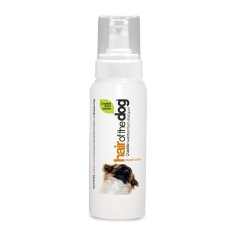 Hair of the Dog Waterless Foam Shampoo – Sweet Honey