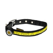PetsGlow - Glitter Bone LED Dog Collar