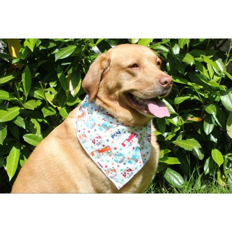 Toggles Happy Glampers Puppy & Dog Bandana 3