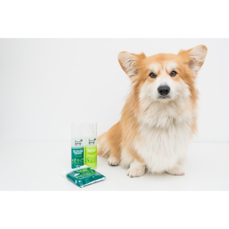 Yup You Stink! Conditioning Shampoo 250ml  2