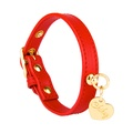 Red and Gold Leather Collar