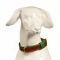 Pimlico Leather Dog Collar – Tan & Green 2