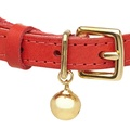 Leather Red Cat Collar 2