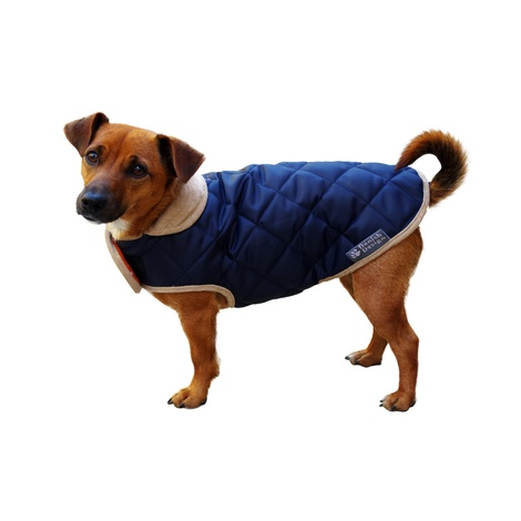 Quilted Dog Coat - Navy