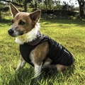 Chelsea Winter Warmer Dog Coat - Black 4