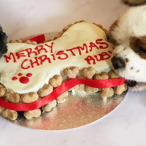 Personalised Bone Christmas Cake 2