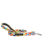 Salt Dog Studios - Salt Dog Studio Harlequin Dog Lead