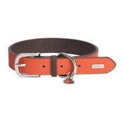 DO&G - DO&G Leather Dog Collar - Orange