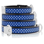 Cool Dog Club - Cool Dog K9 Striker MK2 Polka Dot Blue Dog Collar