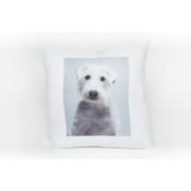 PetsPyjamas - Personalised Pet Pillow