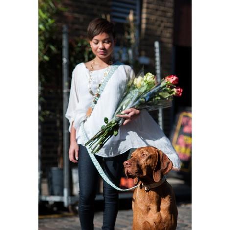 Green Geo Hands-free Dog Lead 3