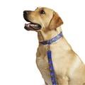 "Superman Dog Collar 1"" Width 2"