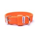 Double Dog Collar – Orange