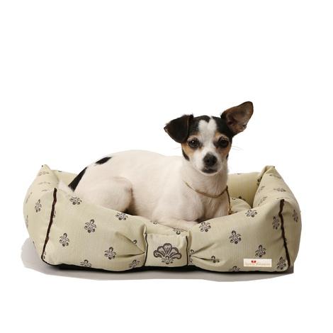 Cantatis Dog Bed - Ivory & Tan