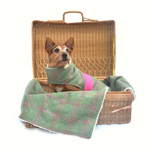 Raspberry Tweed Dog Blanket