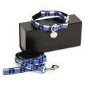 The New Anglesey Collar and Lead Set