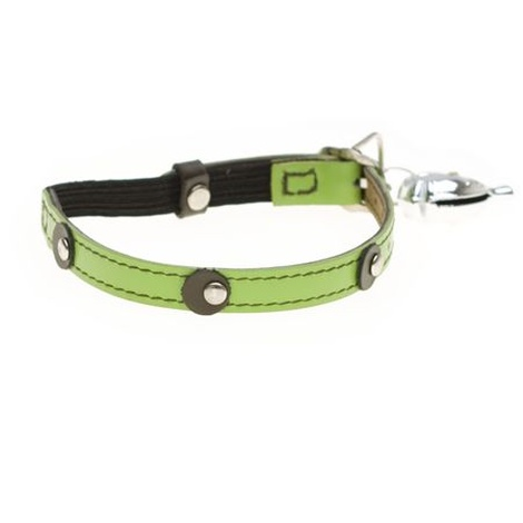 Moet Cat Collar in lime  2