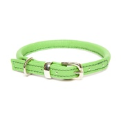 Dogs & Horses - D&H Rolled Leather Collar - Green