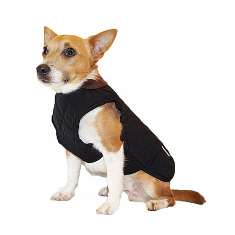 Chelsea Winter Warmer Dog Coat - Black