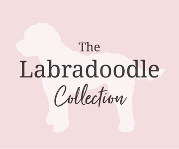 the labradoodle collection