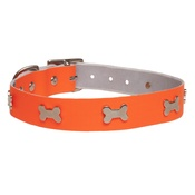 Creature Clothes - Galaxy Dog Collar - Orange, Nickel Bones