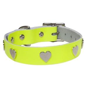 Galaxy Dog Collar - Yellow, Nickel Hearts