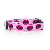 "Pet Pooch Boutique - Batgirl Dog Collar 1"" Width"