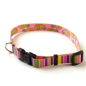 Yellow Dog - Pink Stripes Paisley Collar