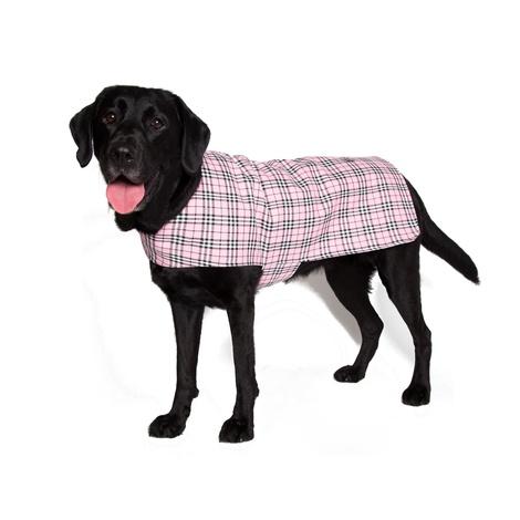 Personalised Pink Check Dog Coat 5