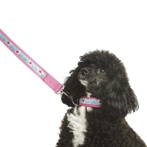 "Stanley Dog Lead 1"" Width 2"