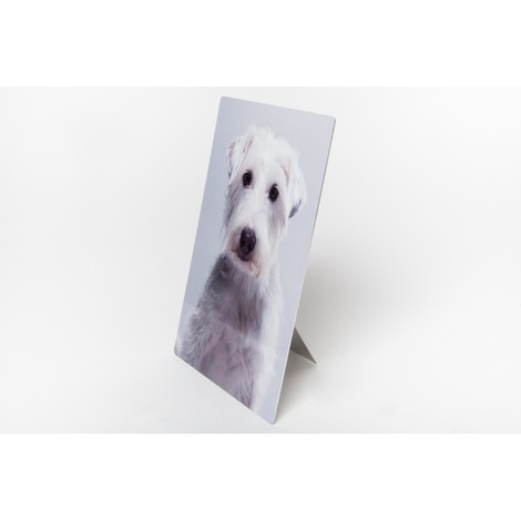 Personalised Plastic Photo of Your Pet