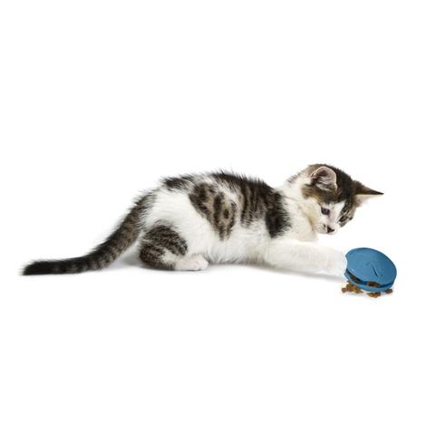 Funkitty™ Twist-n-Treat Cat Toy